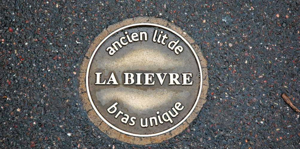 http://www.nap.fr/wp-content/uploads/2015/03/Plot-bronze-bievre1-1003x500.jpg