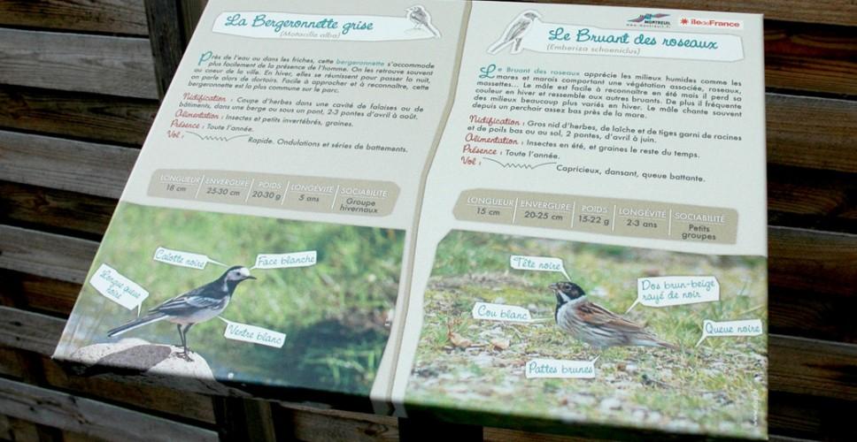 http://www.nap.fr/wp-content/uploads/2015/03/TNPC-pupitre-oiseaux-968x500.jpg