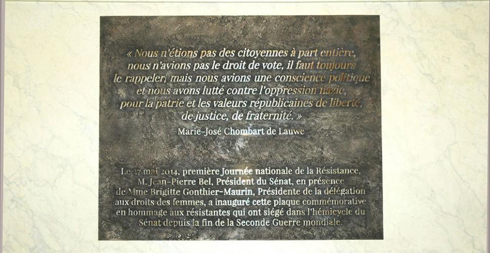 http://www.nap.fr/wp-content/uploads/2015/03/bronze-resistance-senat1-968x500.jpg