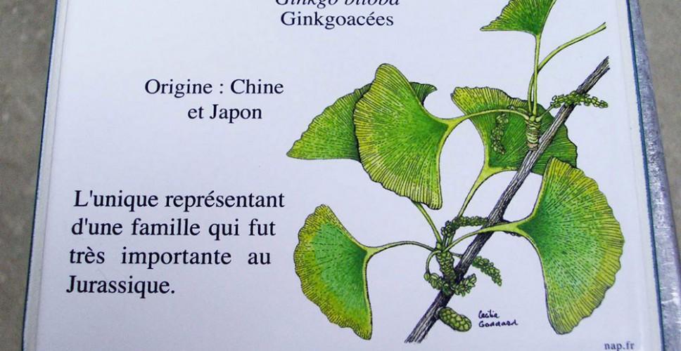 http://www.nap.fr/wp-content/uploads/2015/03/etiquette-vegetale-lave-emaillee2-968x500.jpg