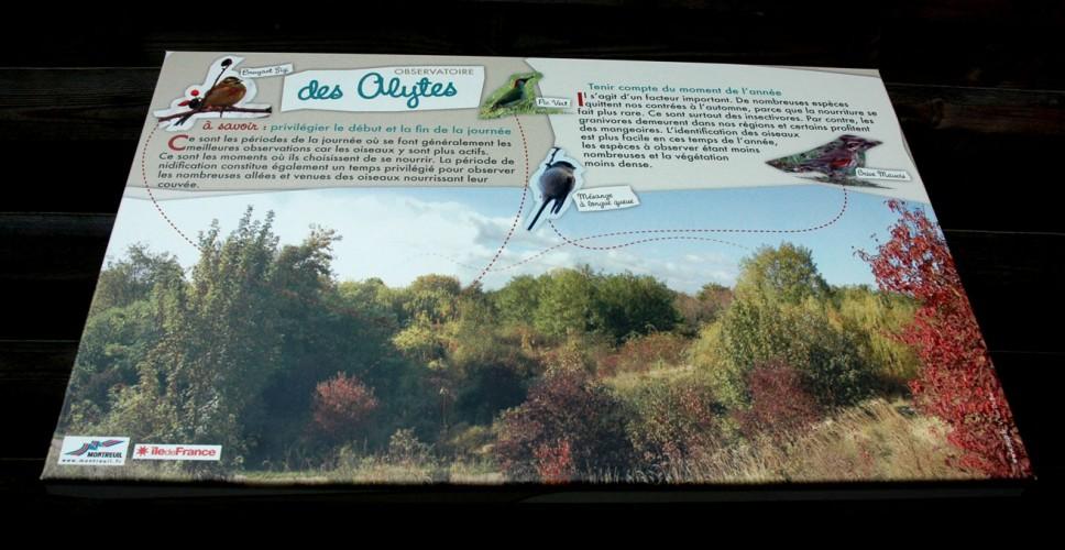 http://www.nap.fr/wp-content/uploads/2015/03/parcours-nature-montreuil-2-968x500.jpg